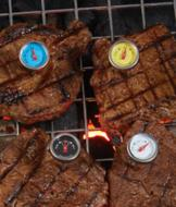Steak Button Thermometers - Set of 4
