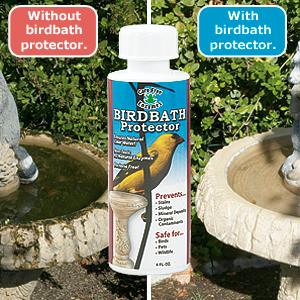 All Natural Birdbath Protector