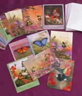 Hummingbird and Butterfly Cards - Set of 32