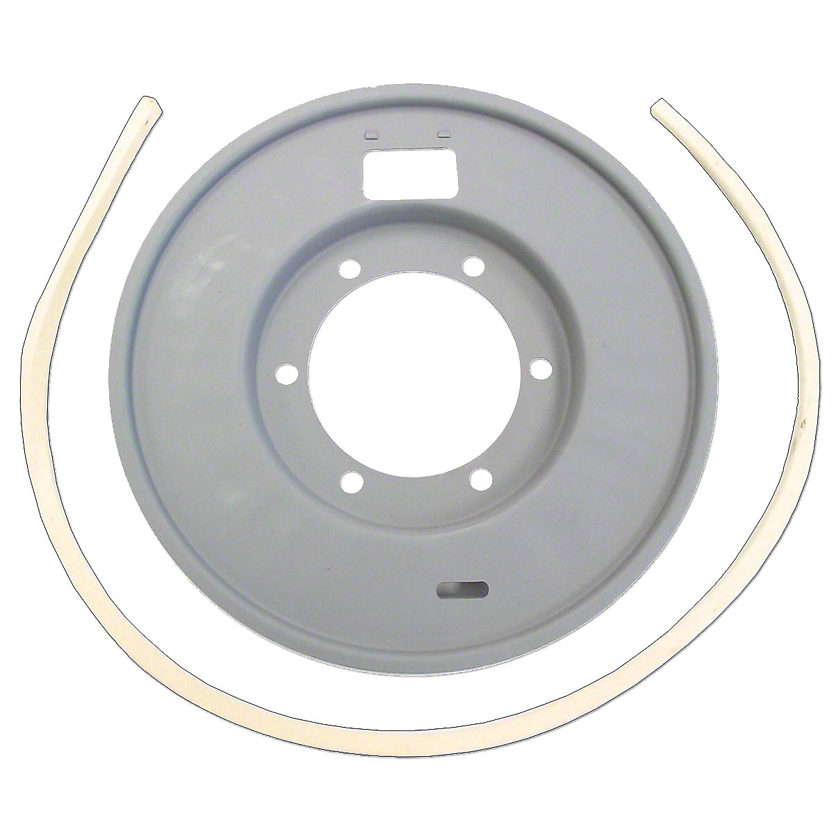 FDS194 Brake Dust Shield