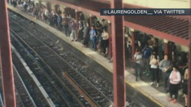 NY lawmakers approve Gov. Cuomo's pick for MTA chairman