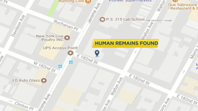 Arrest made in connection to human remains found in the Bronx