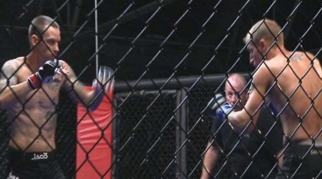 Senate Assembly Close To Agreement On Legalizing Mixed Martial Arts