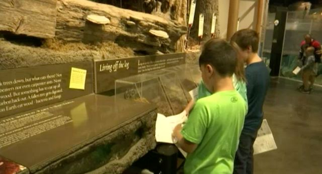 Holiday Match Helps Kids, Community Understand More About Nature