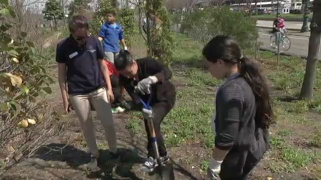 Students Get Hands Dirty at Hudson River Park for Earth Day