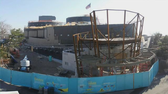 New york aquarium swims through memories of shark exhibit for Construction aquarium