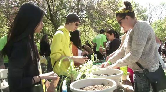 Queens Botanical Garden Celebrates Two Green Holidays