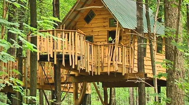 New Treehouse Brings New Experience to Sunshine Camp