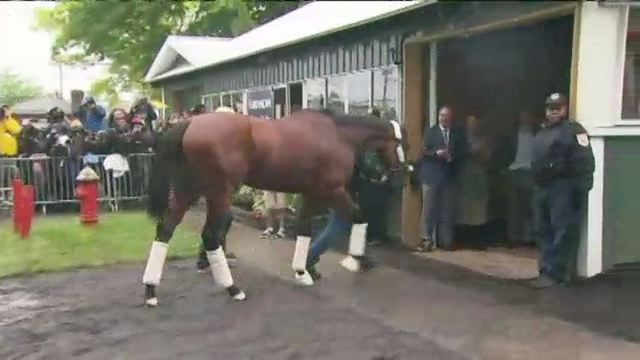 Triple Crown Hopeful Arrives for Belmont Stakes