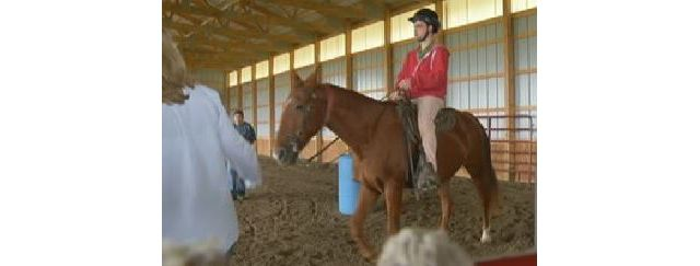 Horseback Riding for Therapy