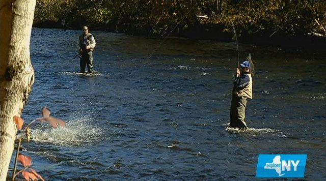Fishing on the salmon river for Salmon river ny fishing