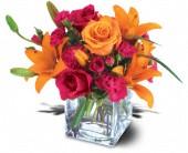 Acorn Flower Shoppe Logo