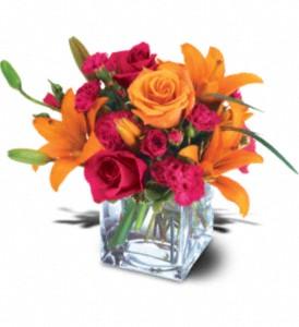 City Garden Florist Logo