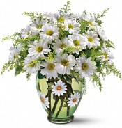 Spring Flowers - Crazy for Daisies Flower Bouquet