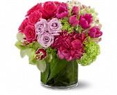 Floral Fantasia, picture