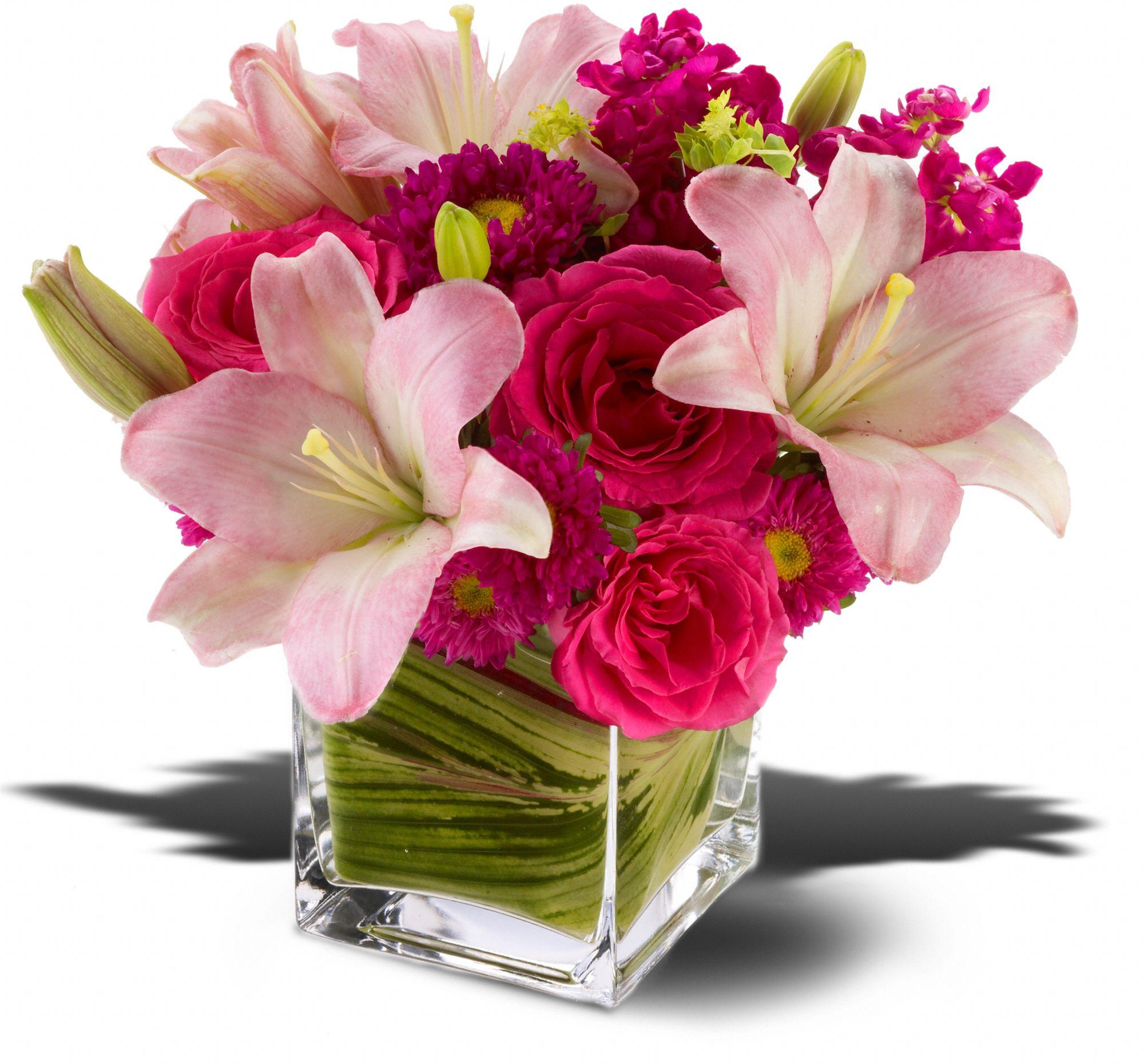 Freshland Flowers company