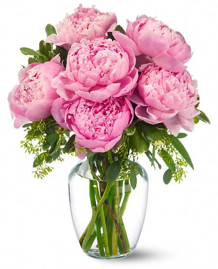 Mothers Day Flowers  Peonies in Pink
