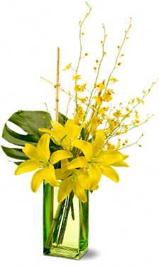 Touch of Tranquility Flowers, Touch of Tranquility Flower Bouquet - Teleflora.com :  touch of tranquility flower arrangement lily bouquet flowers