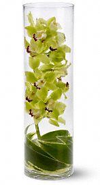 Zensational Flowers, Zensational Flower Bouquet - Teleflora.com :  zensational bouquet teleflora zen