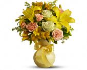 Teleflora's Sunny Smiles in MobileAL, Zimlich Brothers Florist & Greenhouse