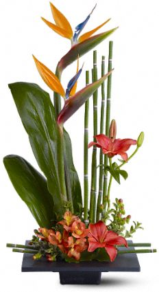 Paradise Found Flowers, Paradise Found Flower Bouquet - Teleflora.com :  flower paradise found flower bouquet lily tropical
