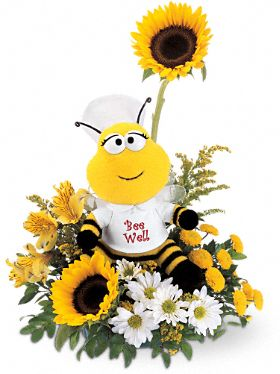Shop for Get Well Flowers
