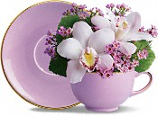Orchid Teacup Bouquet by Teleflora Flowers