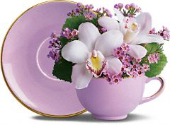 Orchid Teacup Bouquet by Teleflora Flowers, Orchid Teacup Bouquet by Teleflora Flower Bouquet - Teleflora.com