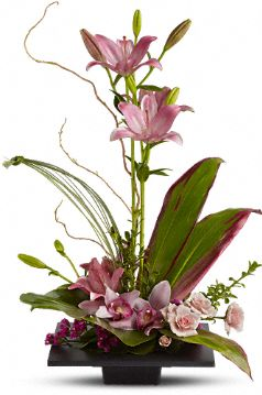Imagination Blooms Flowers, Imagination Blooms Flower Bouquet - Teleflora.com :  flower asiatic lilies imagination blooms flower bouquet lily