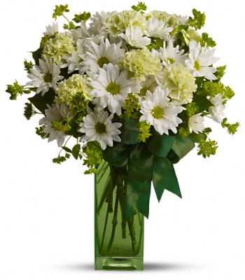 St. Patrick's Day-zies by Teleflora Flowers