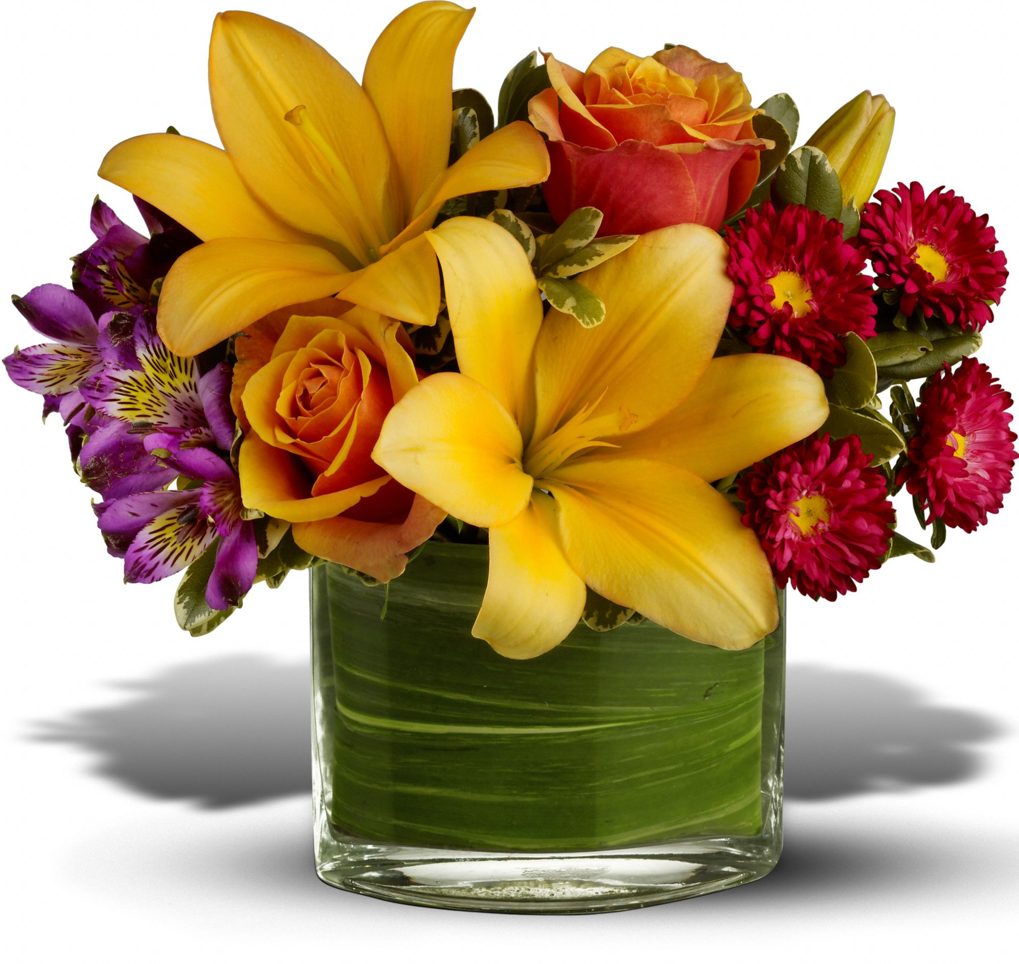 Nouveaux arrangements floraux