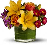 Hello Sunshine Flowers