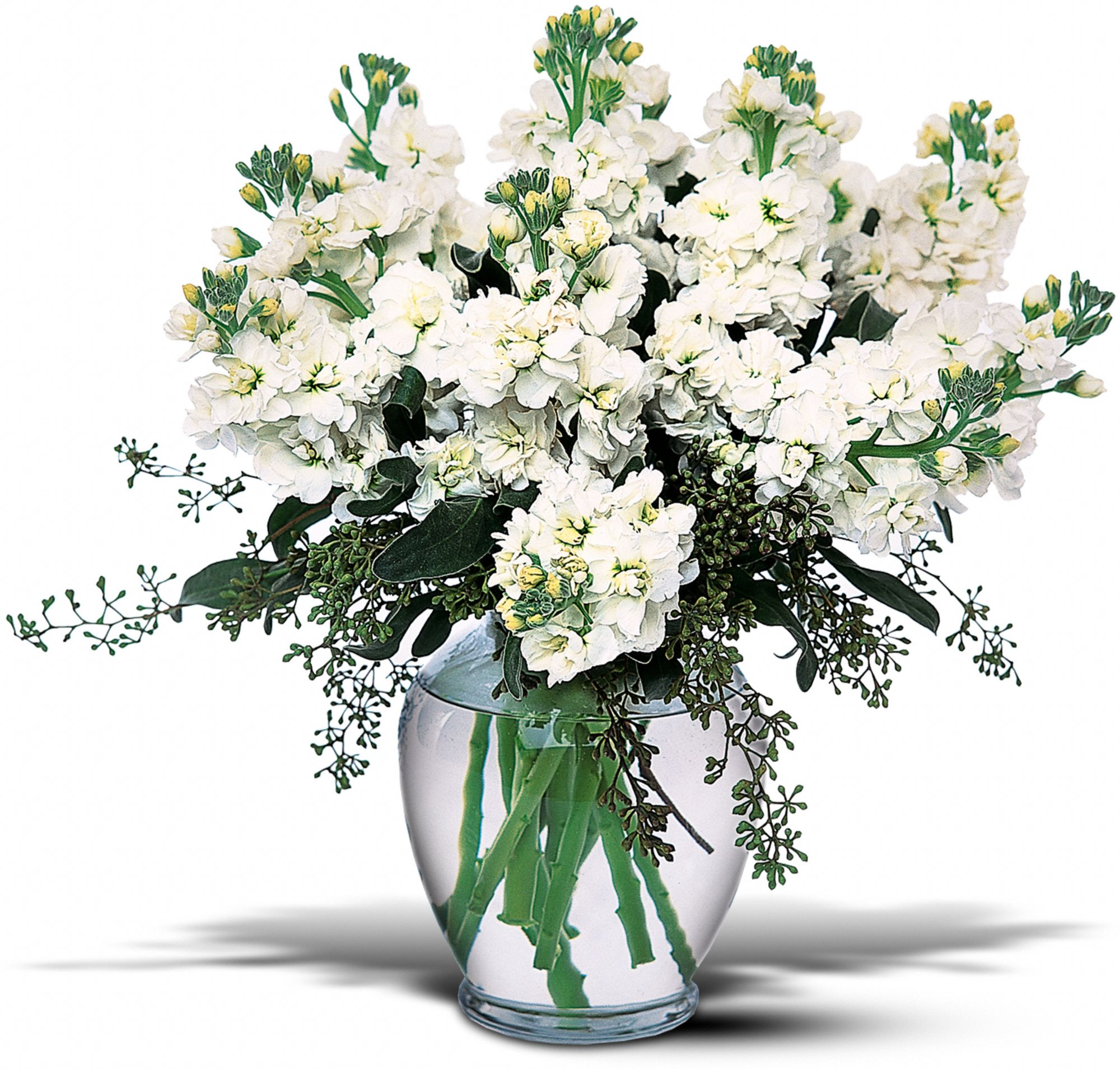 Stylish Stock Flowers, Stylish Stock Flower Bouquet - Teleflora.com