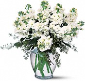 Stylish Stock Flowers