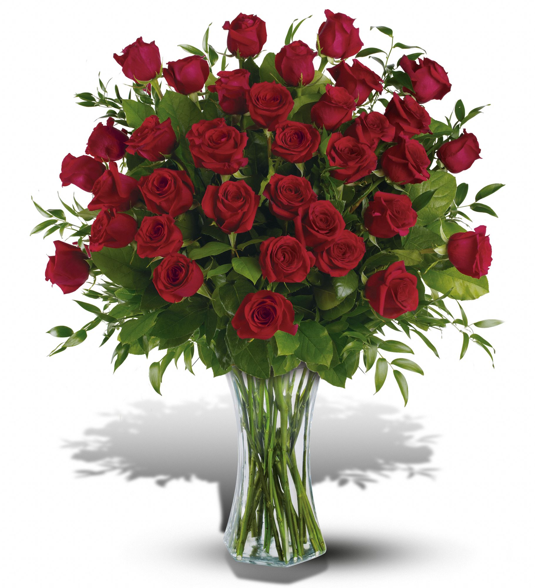 Hunt Valley Florals & Gifts, Hunt Valley, Maryland - Three Dozen Red Roses, picture