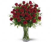 Three Dozen Red Roses, picture