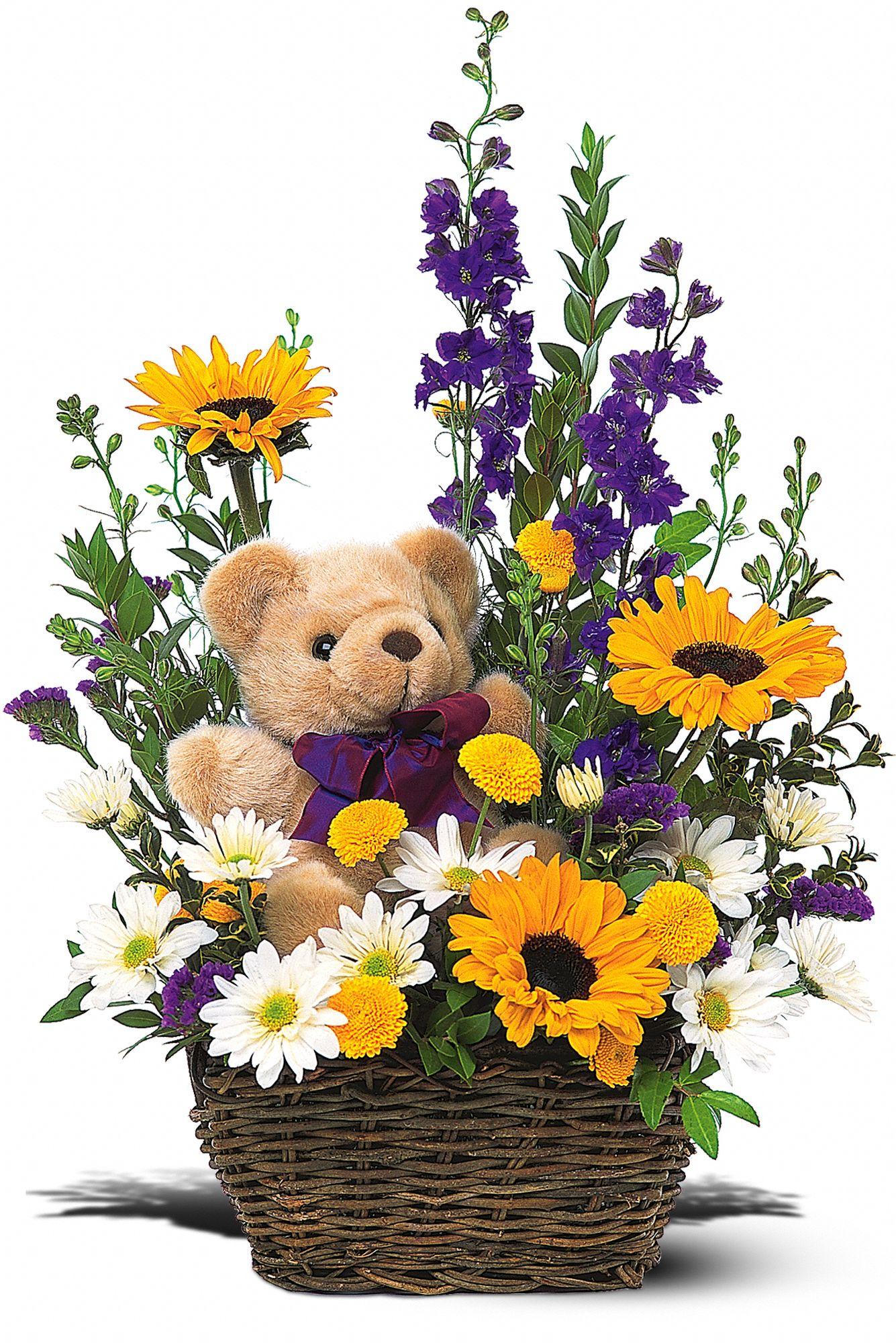 Basket & Bear Arrangement