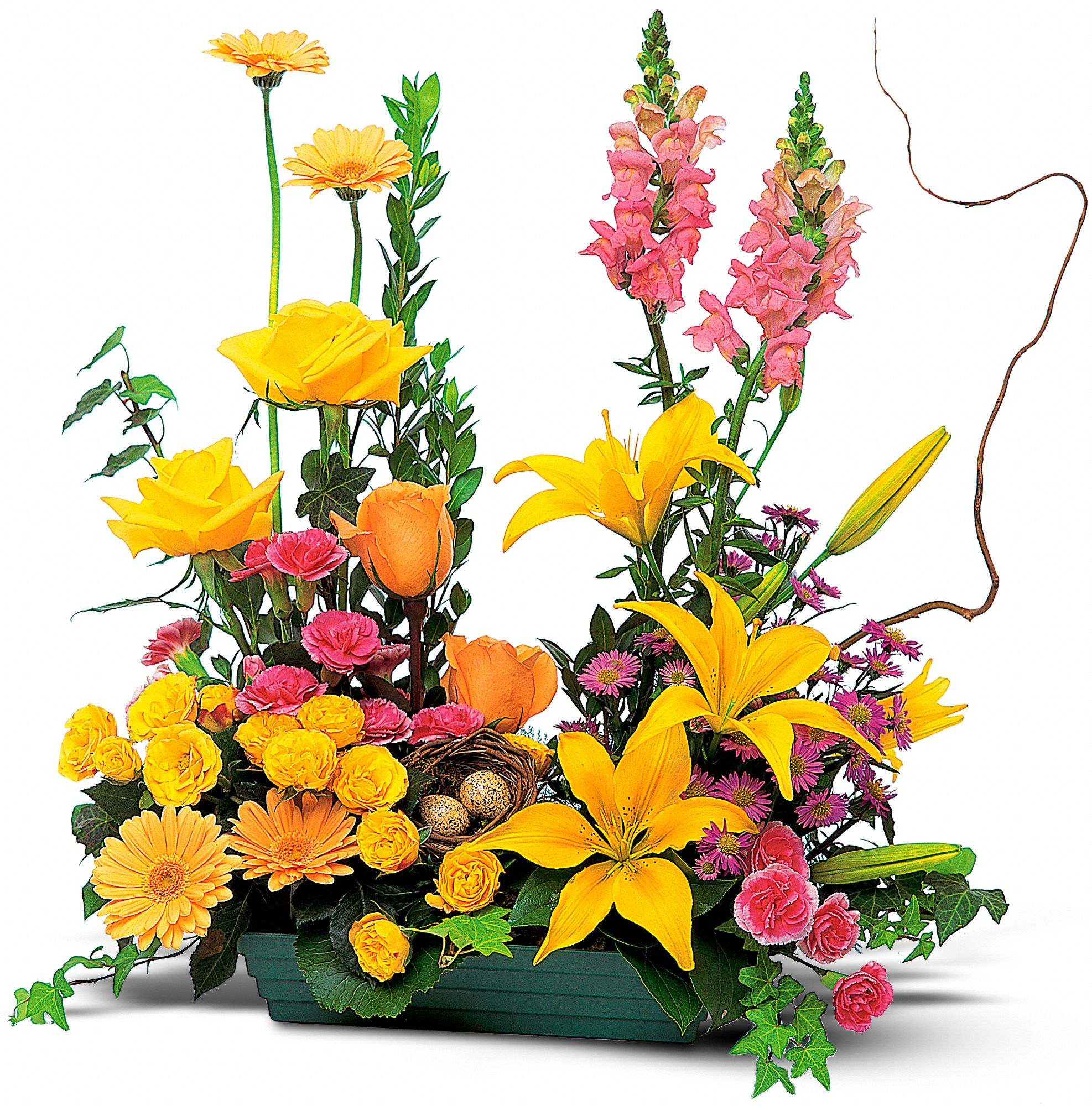 Hunt Valley Florals & Gifts, Hunt Valley, Maryland - Celebrate in Style, picture