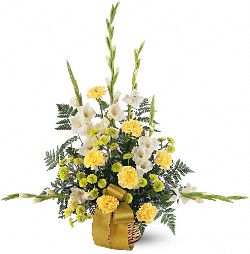 Vibrant Yellow Basket Flowers