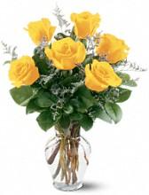 6 long stem yellow roses