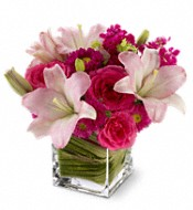 Teleflora's Posh Pinks Flowers