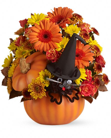 Teleflora's Bewitched Cat Bouquet Flowers