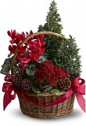 Tannenbaum Basket Flowers