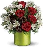 Teleflora's Christmas Cheer Bouquet Flowers