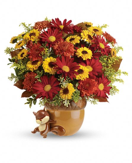 Teleflora's Send a Hug Squirrel Away Bouquet DX Flowers