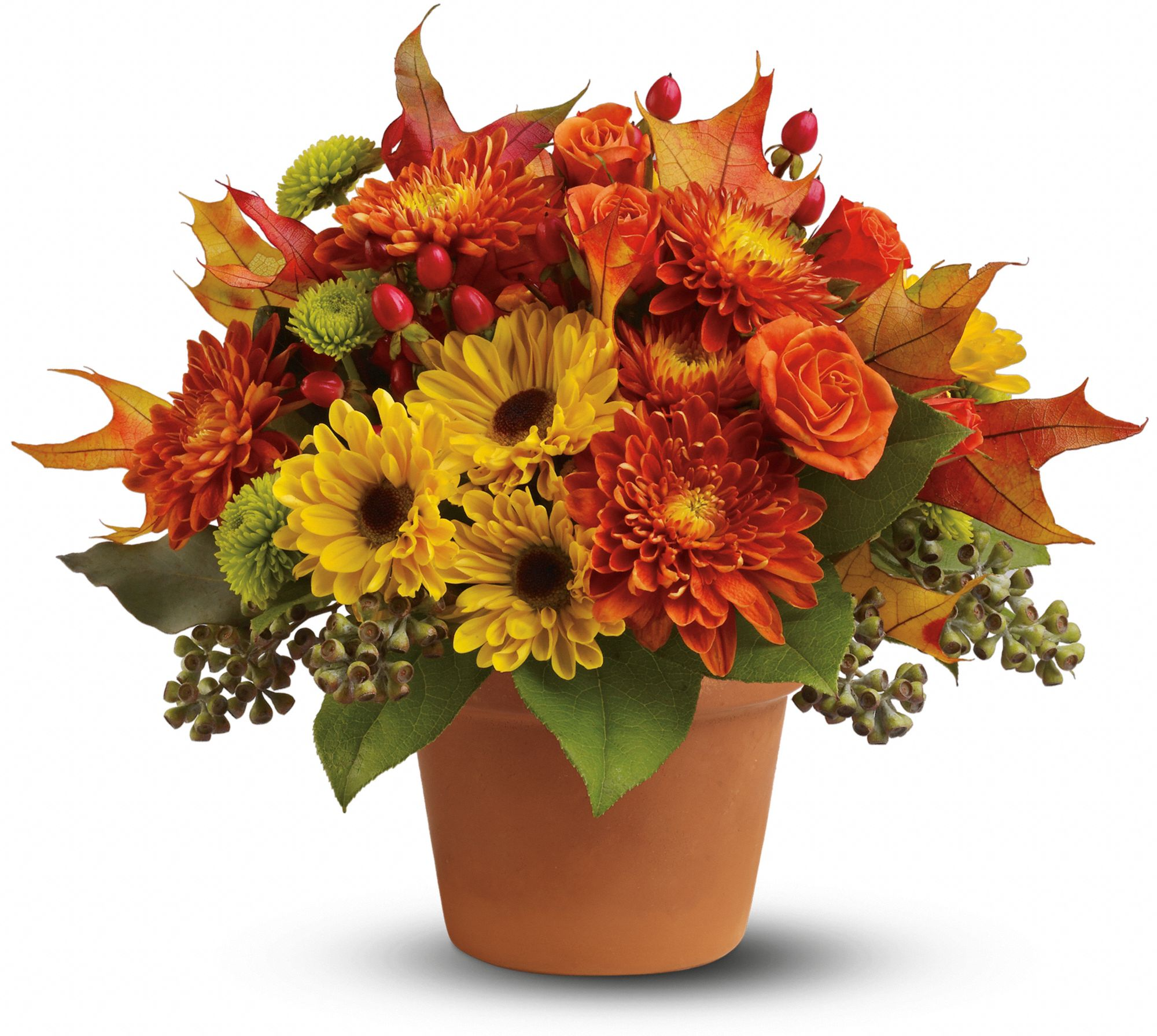 Thanksgiving Flower Arrangements & Delivery | Teleflora