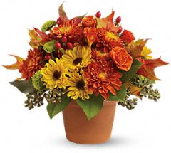 Sugar Maples fall bouquet