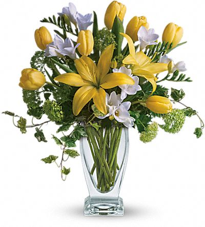 Shop for Freesia