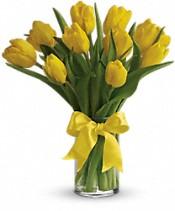 Bouquet Tulipes jaunes comme le soleil