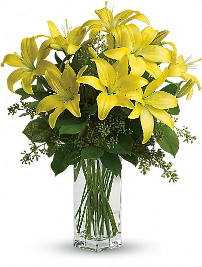 lily flower meaning  symbolism  teleflora, Natural flower